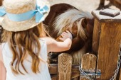Fotografie back view of kid in straw hat touching pony while standing in zoo