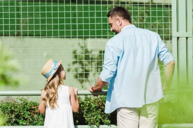 selective focus of cheerful father and daughter looking at each other in zoo