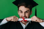 Fotografie front view of angry student in academic cap biting diploma with red ribbon isolated on green