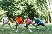 spokojení miltiční muži a ženy v důchodu v parku