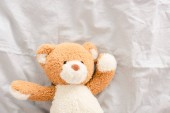 Top view of plush teddy bear on white fabric