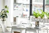kancelář s stolovou, židlí, zelenými rostlinami a digitálními zařízeními