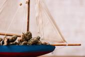 közelről tekintettel a dekoratív hajó szárított növényi csomók