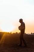 boční pohled na zemědělce v slaměném klobouku držící dřevěnou skříňku při chůzi během západu slunce