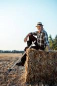cheerful bearded farmer in straw hat sitting on bale of hay