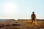 vista posteriore delluomo anziano che tiene rastrello nel campo di grano