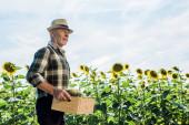 bearded senior man holding box with sunflowers
