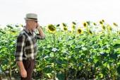 Photo cheerful self-employed senior farmer talking on smartphone near sunflowers