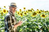 happy self-employed  farmer using digital tablet near field with sunflowers