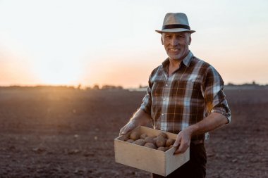 Cheerful self-employed farmer holding box with organic potatoes stock vector