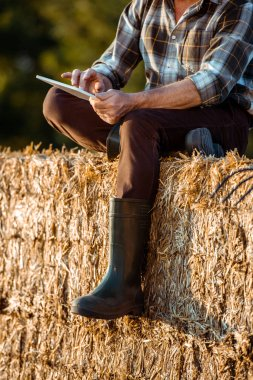 Cropped view of self-employed farmer using digital tablet while sitting on bale of hay stock vector
