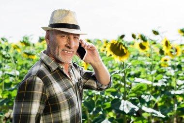 Cheerful senior man talking on smartphone near sunflowers stock vector