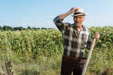 Happy self-employed man holding rack near green field stock vector