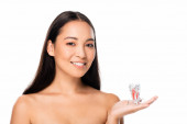 Fotografie happy naked asian woman holding tooth model isolated on white with copy space