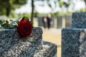 árnyékok vörös aromás emelkedett a beton sír