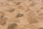 Fotografie selektivní zaměření zlatého vlnitého písku v poušti