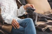 oříznutý pohled na ženu v dece sedící na pohovce se skotskou skládací kočkou