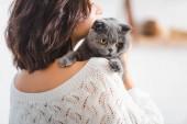 közelről gyönyörű nő -val aranyos skót fold cat