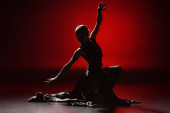 silhouette of elegant woman dancing flamenco on red