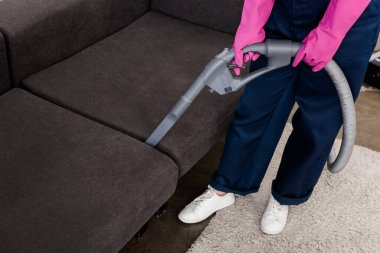 Cropped view of cleaner in rubber gloves cleaning sofa with vacuum cleaner stock vector