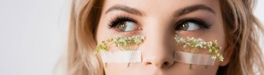 Cropped view of beautiful blonde woman with wildflowers under eyes isolated on white, panoramic shot stock vector