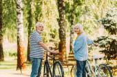 Starší pár usmívá na kameru, zatímco stojí v blízkosti kol v parku