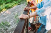 Vágott kilátás idős pár mopsz kutya pórázon álló hídon a parkban