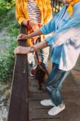 Vágott kilátás idős pár mopsz kutya szempilla álló hídon a parkban