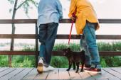 Vágott kilátás mopszli kutya nézi kamera közelében idős pár álló hídon parkban