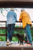 Szelektív fókusz idős pár mopsz kutya pórázon álló fa híd a parkban