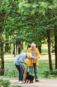 Szelektív fókusz idős pár játszik mopsz kutya a parkban nyáron