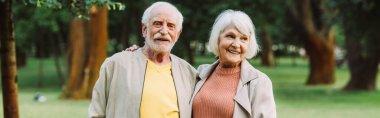 Panoramic crop of smiling senior woman embracing husband in park stock vector