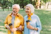 Pozitivní starší pár držící jednorázové poháry v parku v létě