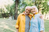 Pozitivní senior muž objímání usměvavá manželka v letním parku