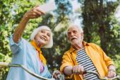 Nízký úhel pohledu na usmívající se starší žena přičemž selfie s manželem v blízkosti kol v parku
