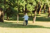 Pohled na starší ženu procházející se na kole na trávě v parku