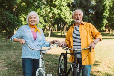 Positive elderly couple smiling near bikes in summer park stock vector