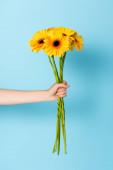oříznutý pohled na ženu držící žluté květy na modré