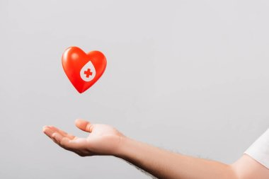 Cropped view of male hand and red heart isolated on white, blood donation concept stock vector