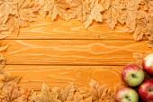 felső nézet érett alma és őszi lombozat fából készült háttér