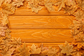 top view of autumnal foliage arranged in frame on wooden background
