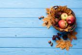 felső nézet őszi fonott kosár almával, dió és kúp kék fa háttér