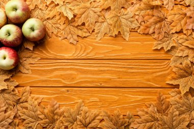 Top view of ripe apples and autumnal foliage on wooden background stock vector