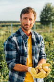farmář v kostkované košili drží čerstvé, organické brambory v dlaních při pohledu na fotoaparát