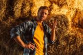 farmář v kostkované košili stojící s rukou na boku a ukazující ok gesto v blízkosti kupky sena
