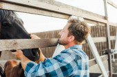 Photo rancher in plaid shirt touching brown horse in corral on farm