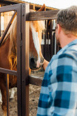 Fotografie selective focus of farmer in checkered shirt touching horse in corral on farm