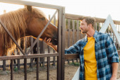 Fotografie rancher in plaid shirt touching head of brown horse in corral on farm