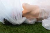 zpět pohled nahé ženy ležící v blízkosti polyethylenu na trávě
