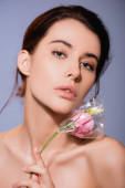 naked and brunette woman holding flowers in polyethylene isolated on grey, ecology concept